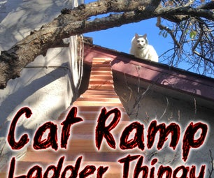 Cat Ramp Ladder Thingy