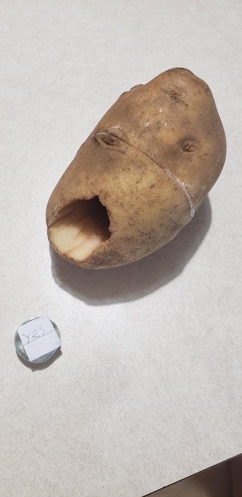 Magic Potato
