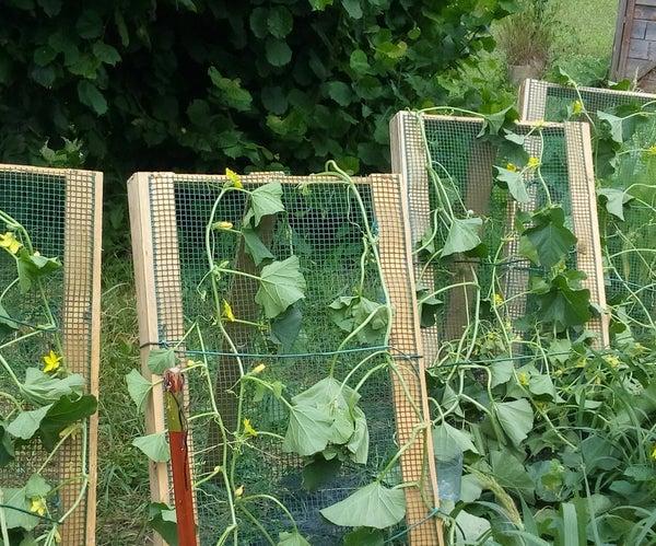 Horticultural Solar Panel
