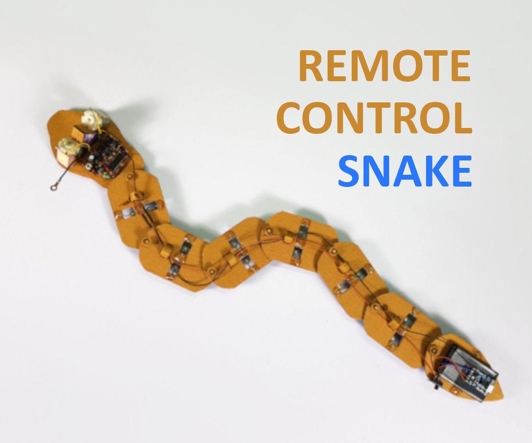 DIY - Remote Control Snake