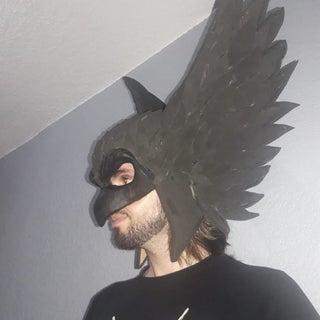 DIY Hawk Helmet
