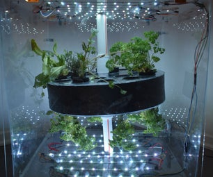 Cylindrical Aeroponics Growth System