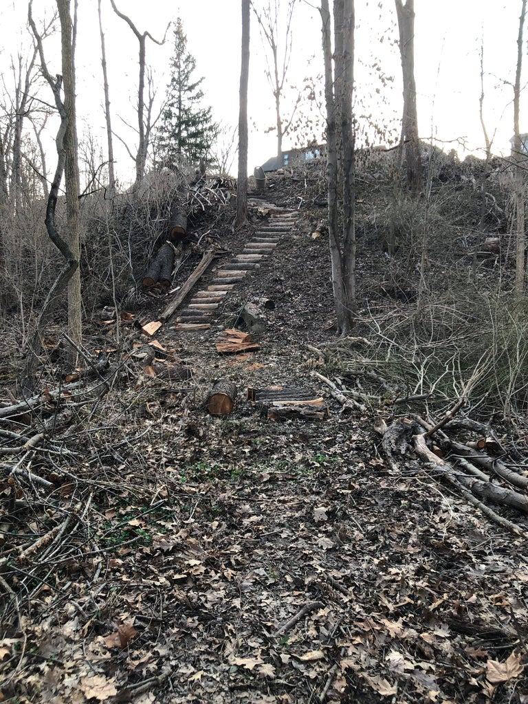 Carving Out the Path