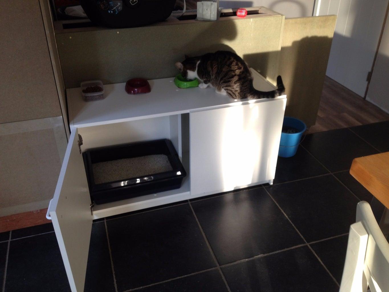 Hidden Cat Toilet
