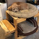 Double Decker Doggy Bed