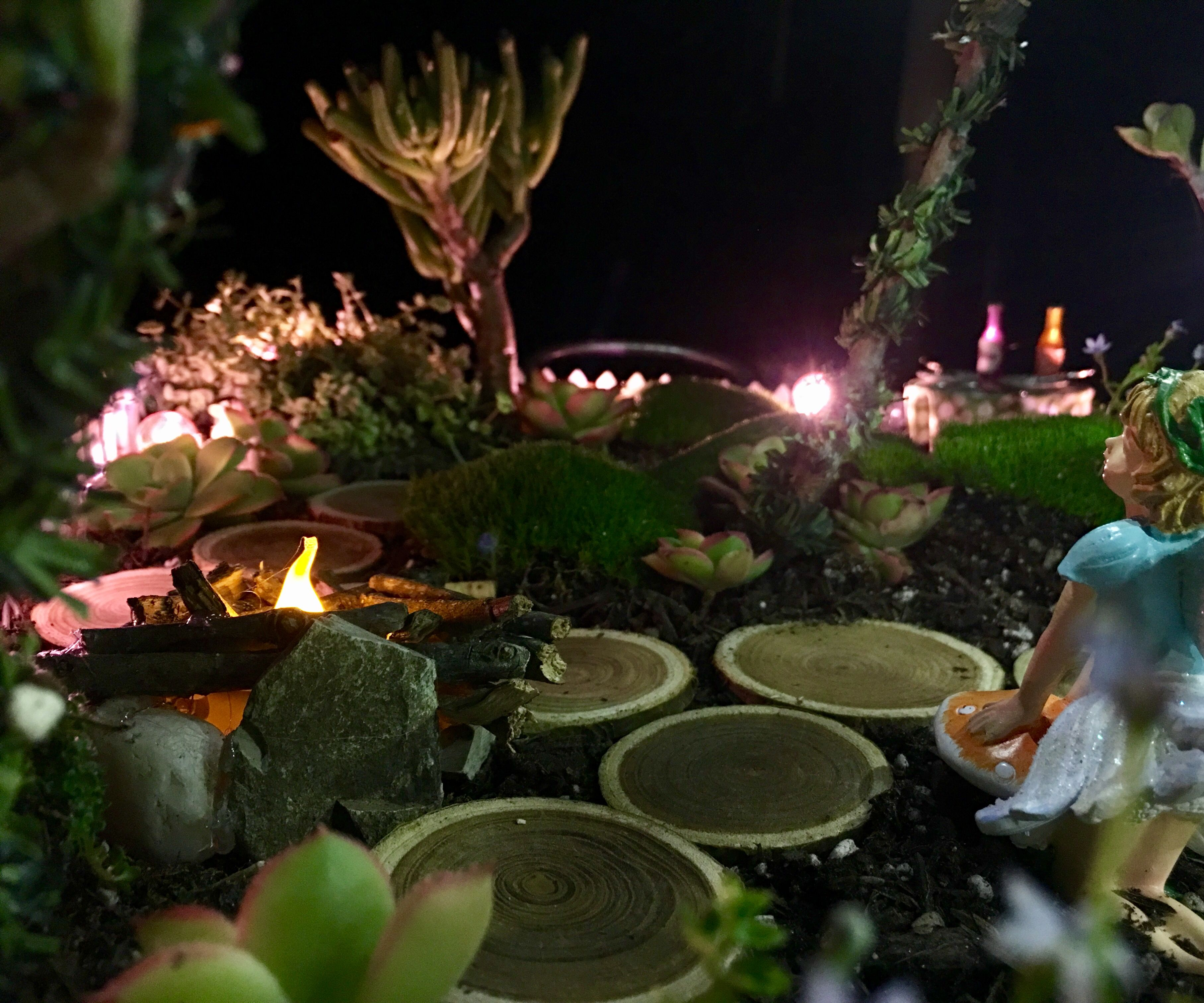 a Magical Lighted Fairy Garden!
