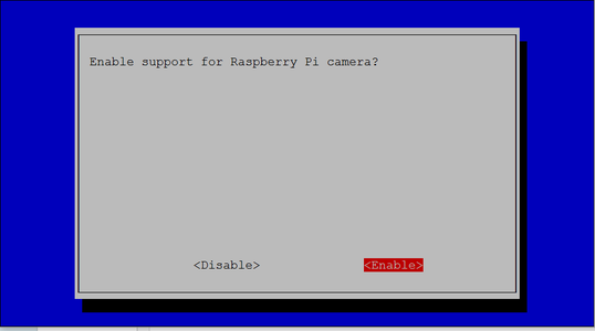 Turn on the Raspberry Pi Camera Function