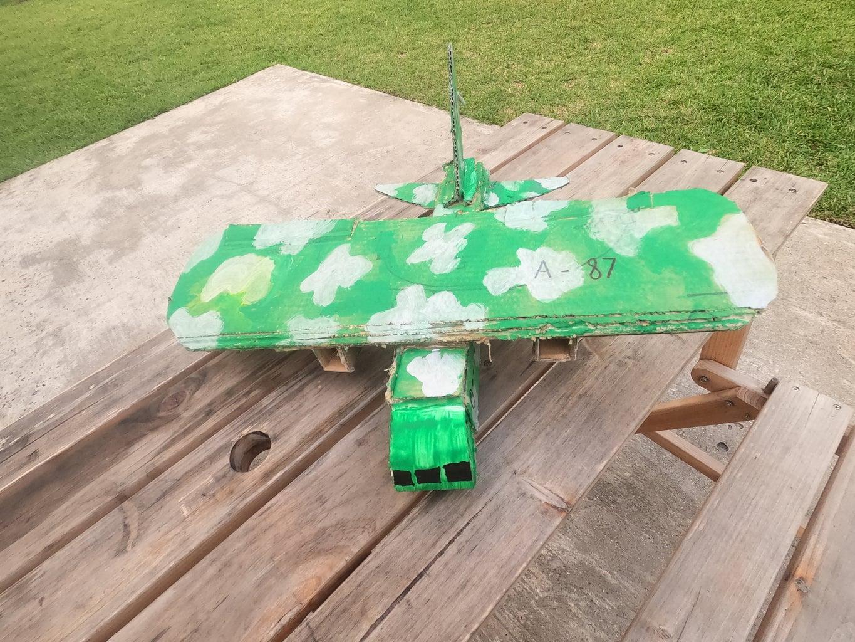 Cardboard RC Plane Under $100