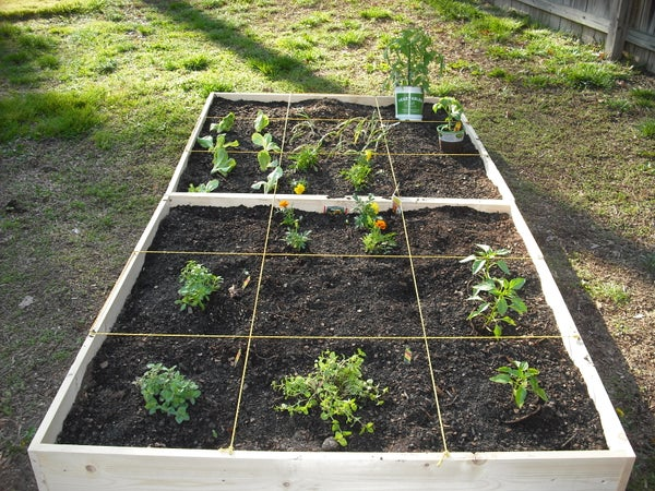 How to Make an Easy Square-foot Garden!