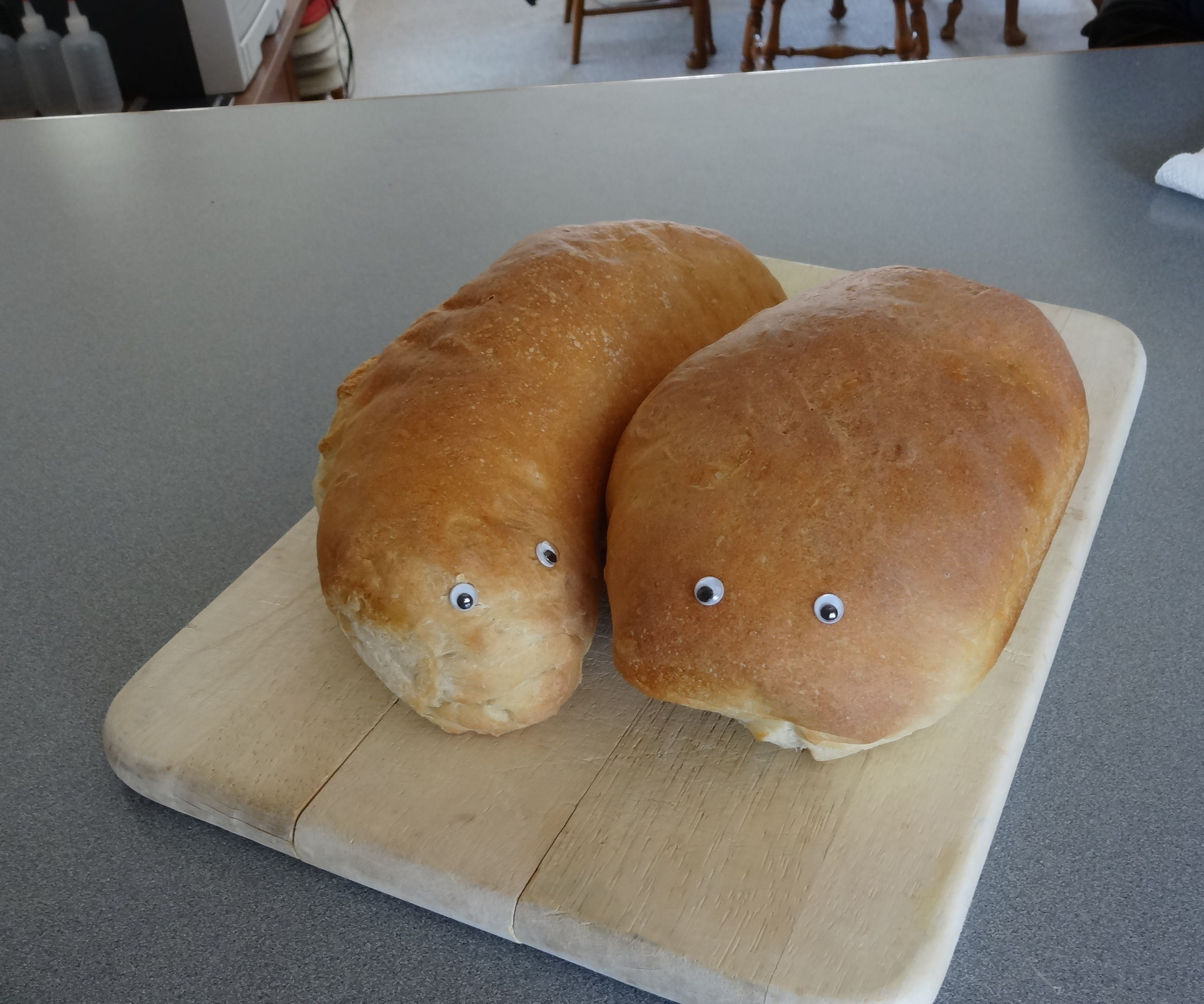 Soft Crust French / Italian Yeast Bread