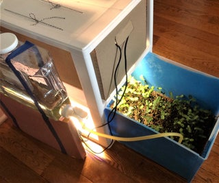 Growing Cube With Drawer for Spacecraft - Year-Round Indoor Salad Gardening( Stage III)