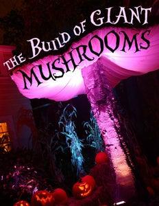 Giant Mushrooms