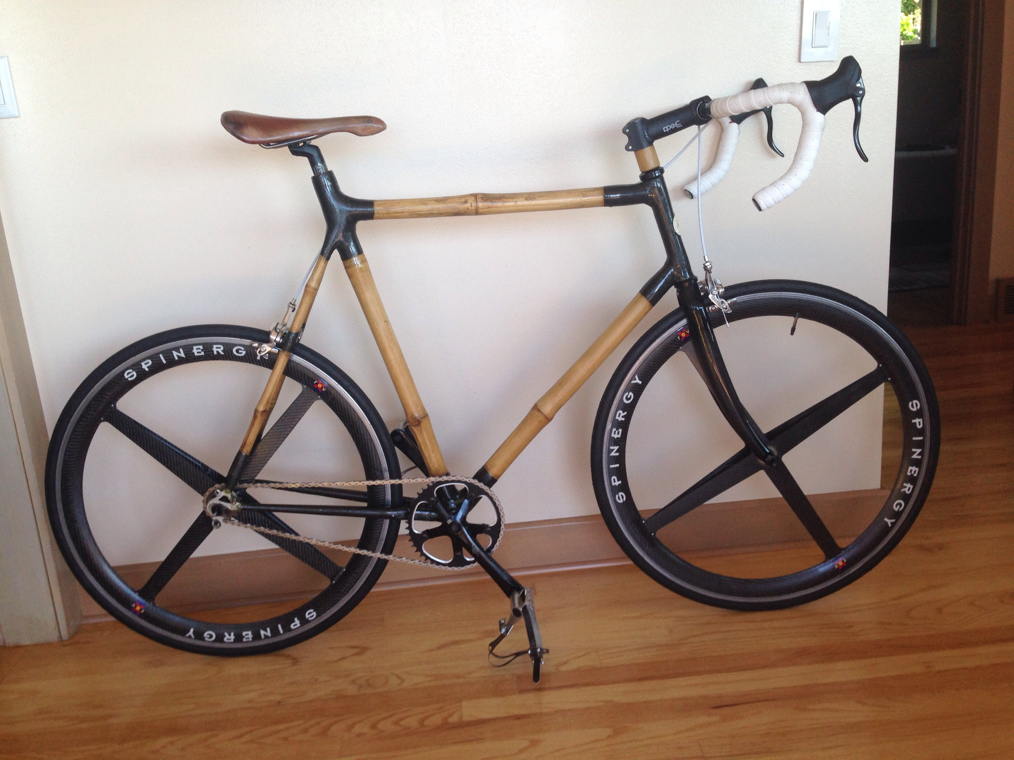 Bamboo Carbon Bike