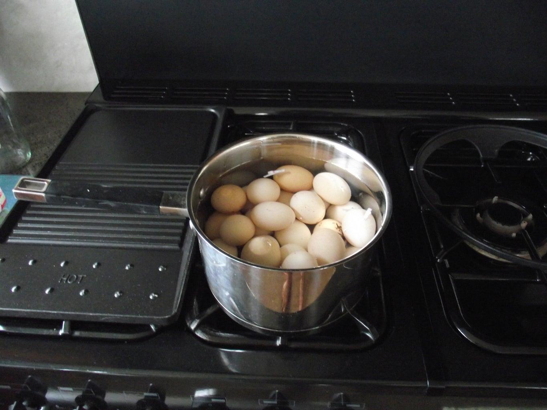 Hard Boil the Eggs