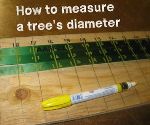 Making Special Tapes to Measure Tree Diameters!