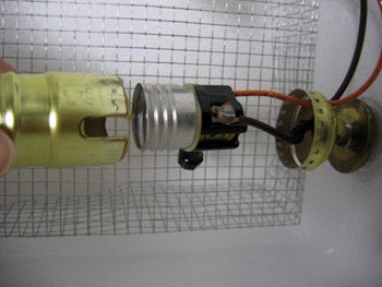 Put Lamp Assembly (heat Source) & Thermostat Into Cooler