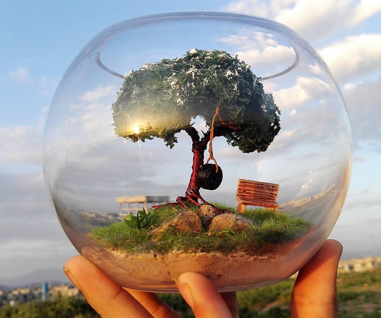 Alone Tree | Terrarium | Diorama