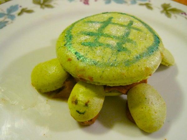 Green Turtle Pistachio Macaron