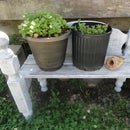 Rustic Garden/Planter Bench From Headboards