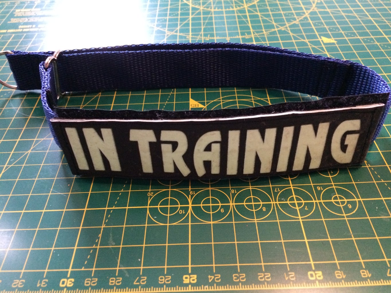 Stitching the Collar