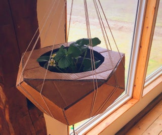Geometric, Pentagonal Planter From Cardboard and a Plastic Bottle
