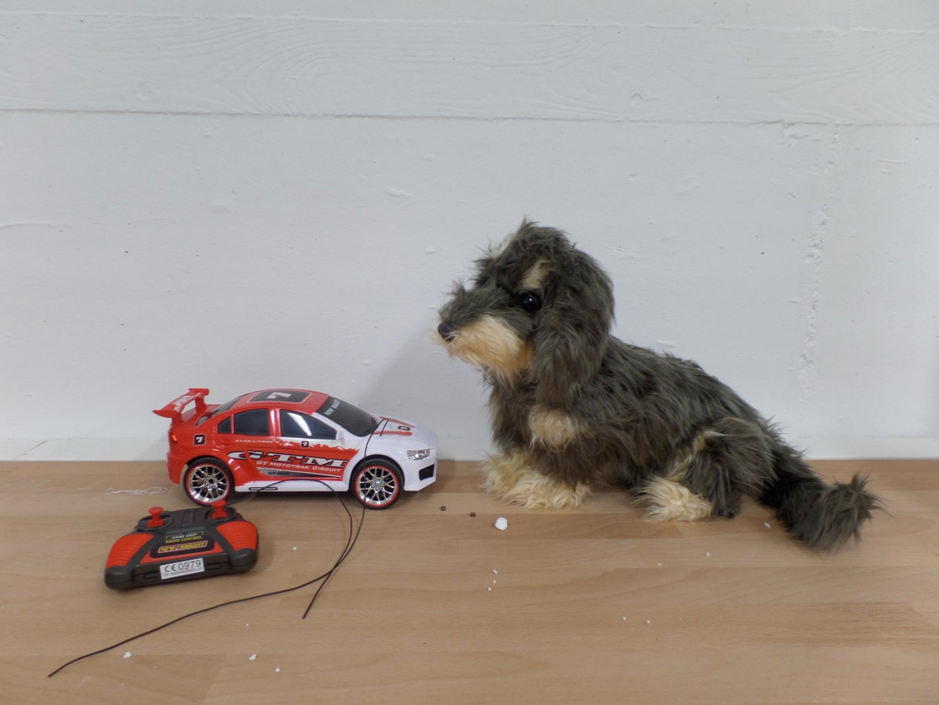 Toto, the Remote Controlled Dog