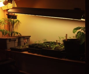 Mike's Urban Farm: Adding Some Hydro Beds