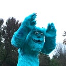 The Ultimate Sully Costume