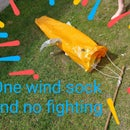 Windsock From Grocery Bags