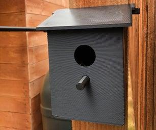 Raspberry Pi Bird Box