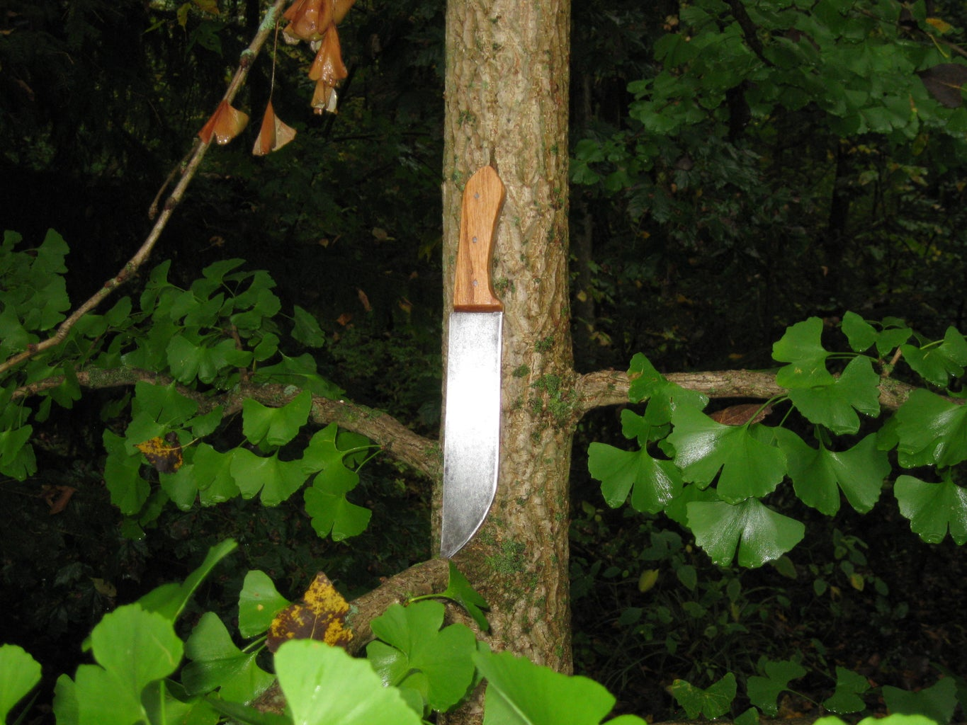 Design and Build a Full Tang Knife