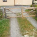 Pallet wood gate