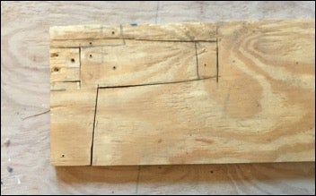 Cut Wood for Holster