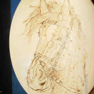 HorseBust.jpg