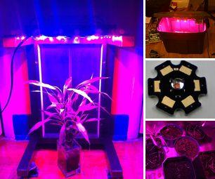 LED Grow Lighting