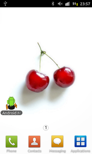 The Android Application