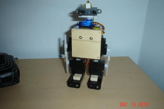 Wobbly, a Mini Biped robot