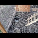 Cheap Chicken Tractor