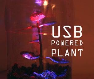USB Powered Plant