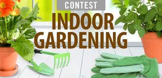 Indoor Gardening Contest 2015