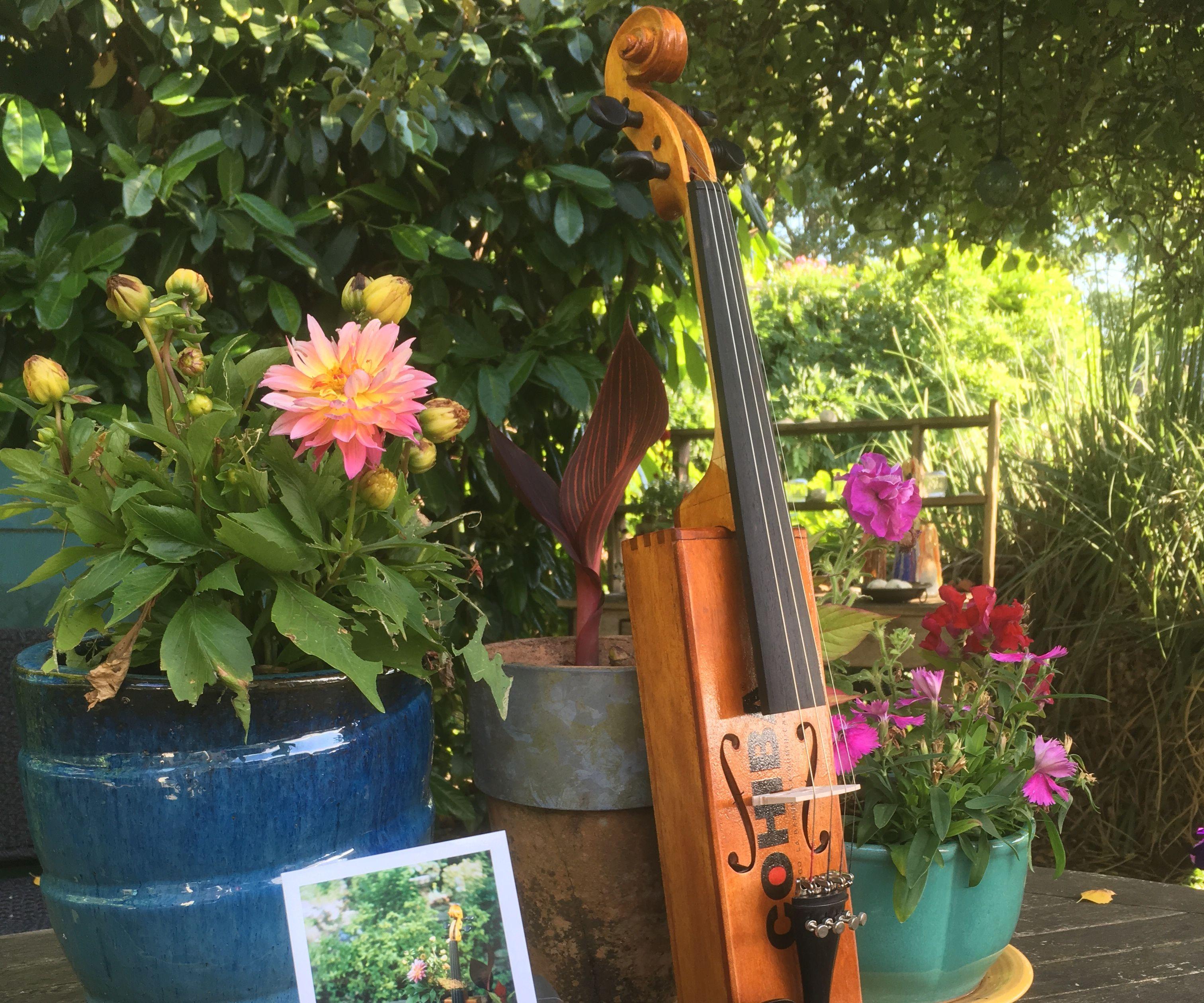 Cigar Box Fiddle / Violin