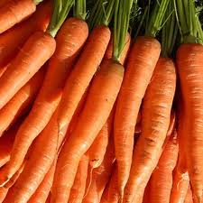 How to Grow Carrots Indoors