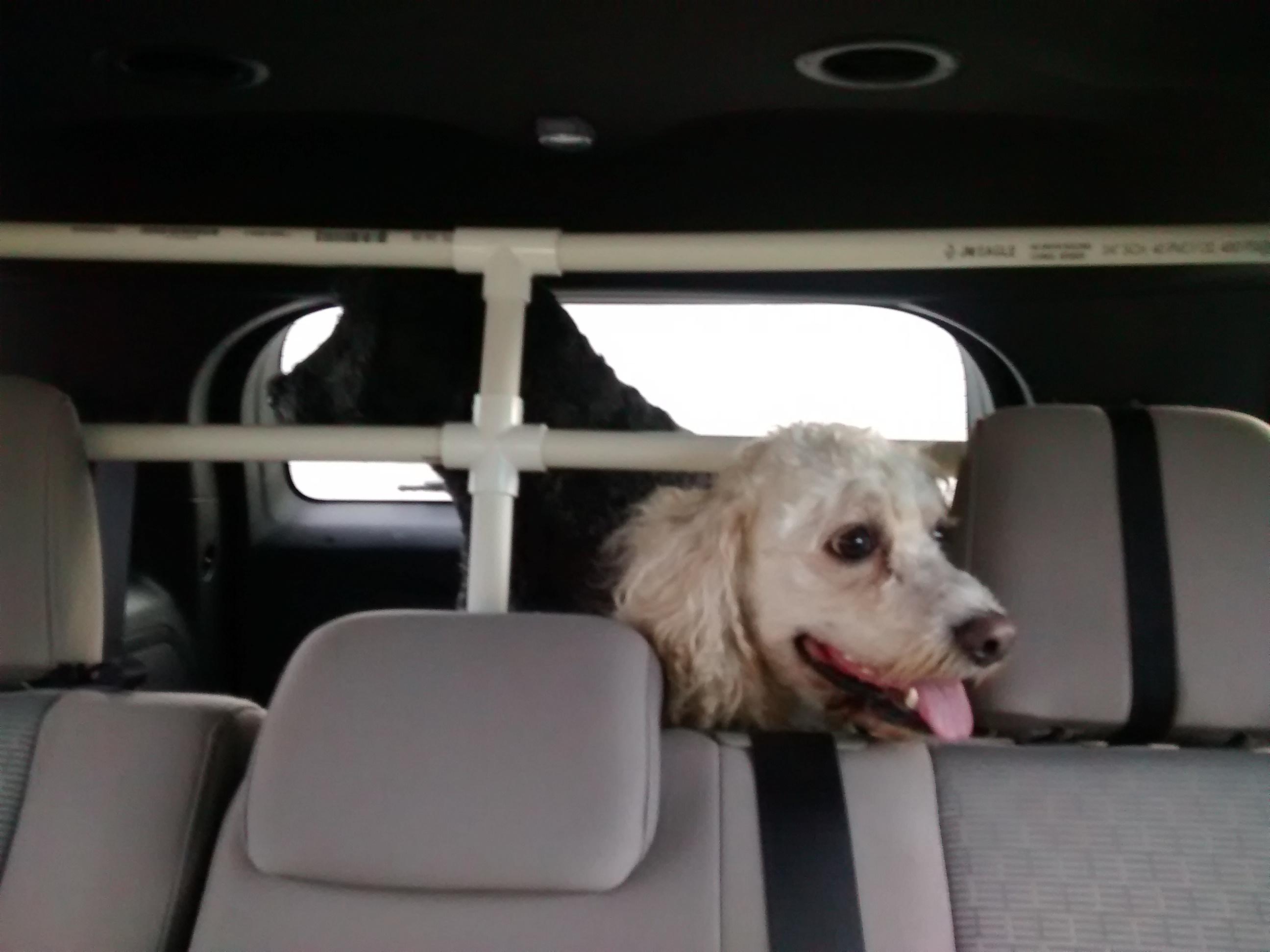 PVC Pet Vehicle Barrier