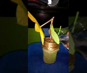 Making a Blooming Flower From Cardboard