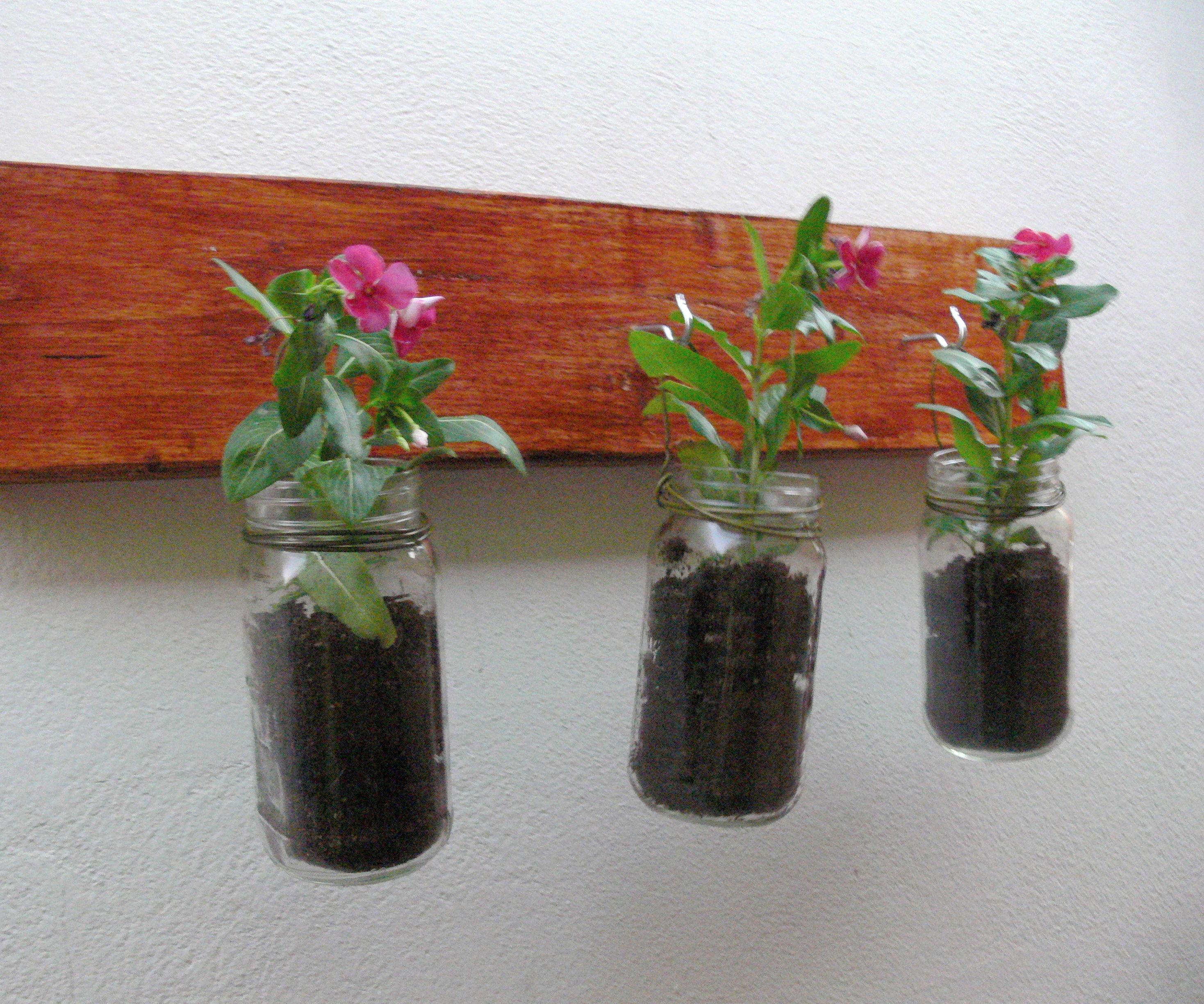 Hanging Jardinerie
