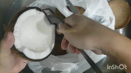 Step 1: Scoop Out the Frozen Coconut Meat