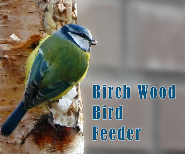 Birch Log Bird Feeder