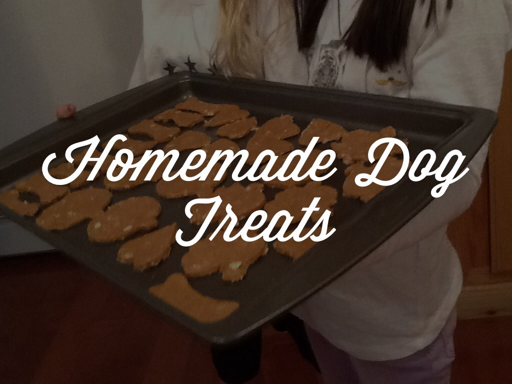 Homemade Vegan Dog Treats