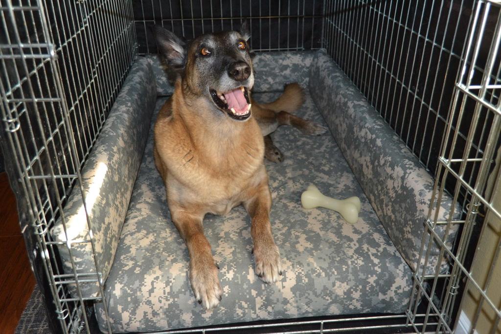 Super Comfy Dog Kennel Bed