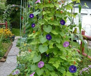 My Garden Bean Tower